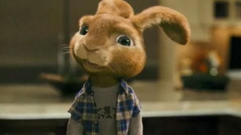 和倒霉男主角卖萌的小兔子