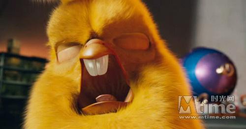 没想到在被外来的长尾鹦鹉取代之后,这只凤头鹦鹉受到了莫大刺激,邪恶
