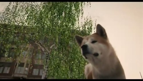 我会等你——直到永远    《忠犬八公》 - 一步之遥 - Por Una Cabeza