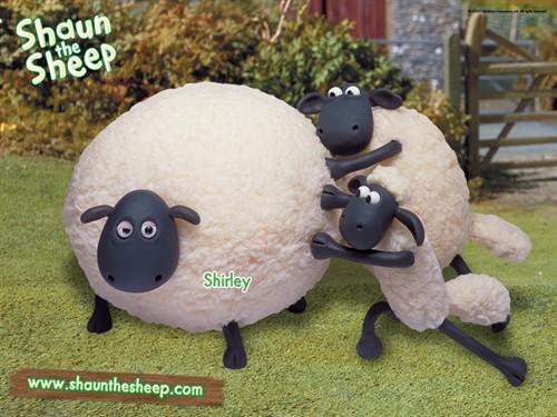 黏土动物手工制作 猪