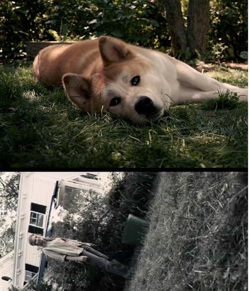 动物故事四格黑白
