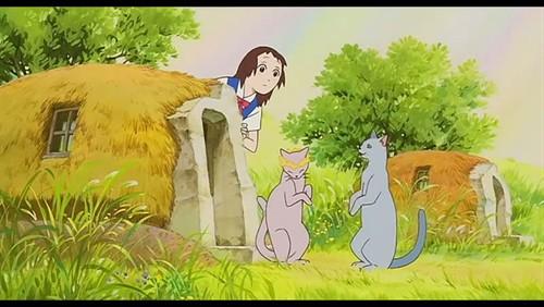 猫的报恩,宫崎骏的所有作品中我最喜欢的 ≧▽≦