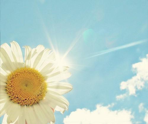 明媚阳光 蓝色天空