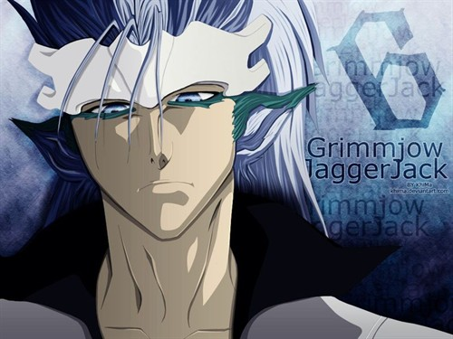 5                            Grimmjow Jeagerjaques Release Form