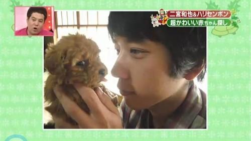 萌萌的动物都在这里——推荐我喜欢的日本综艺节目《天才志村动物园》