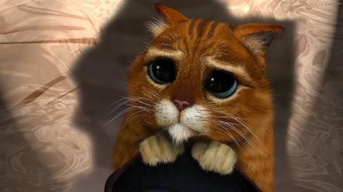 首页 群组 动画艺术实验室 [视频]《穿靴子的猫》首曝海报,预告 斗牛