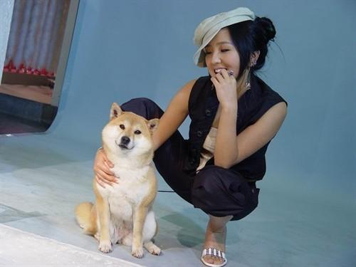女人们总是喜欢动物,尤其是那些可爱的小狗狗和小猫咪.咪咪