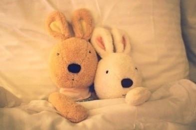 """""""小兔子闭上眼睛, """"我每做一个梦都要想你一遍, 所以,每个梦都是那么"""