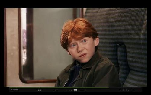 哈利,赫敏和罗恩: 十年小鬼长大成人图片