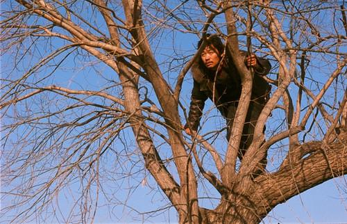《Hello,树先生!》:树之安魂曲 - 麻绳 - 麻绳