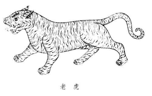 狗画成老虎的图片