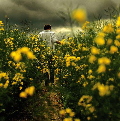【原】一条迎候春天的小径 - 天上人间 - 天上人间