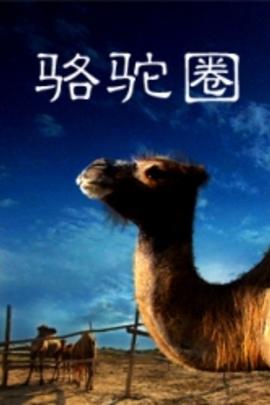 骆驼圈( 未知 )