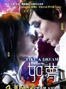如梦 Like a Dream(2009)
