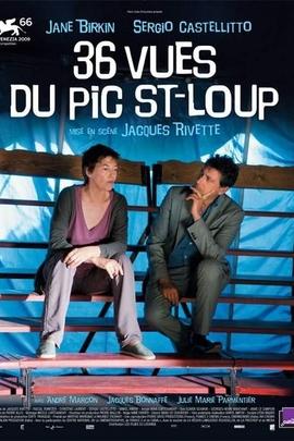 关于圣卢普照片的36条意见( 2009 )