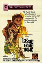 灵犬莱西/Lassie Come Home(1943)