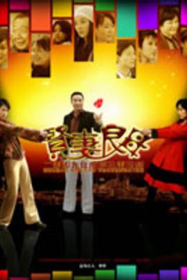 贤妻良母( 2010 )