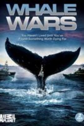 援鲸战役( 2008 )
