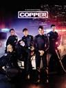 菜鸟警察 Rookie Blue(2010)