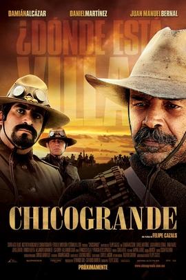 墨西哥枭雄( 2010 )
