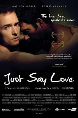 请说爱( 2009 )