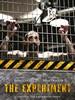 死亡实验 The Experiment(2010)