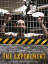 死亡实验/The Experiment(2010)