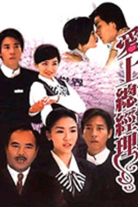 爱上总经理( 2010 )