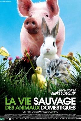 野生动物中的宠物( 2009 )