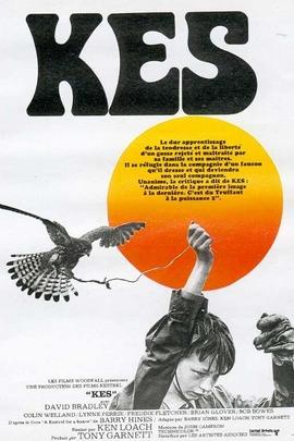 小孩与鹰( 1969 )