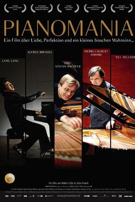 钢琴调音师( 2009 )
