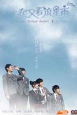 一起又看流星雨( 2010 )