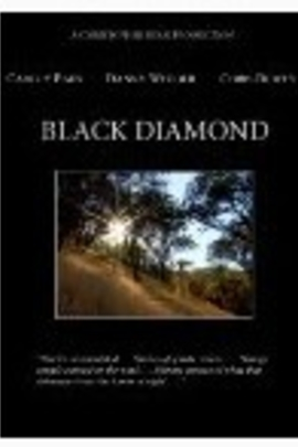 黑钻( 2009 )
