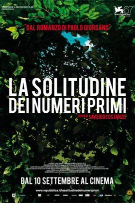 质数的孤独( 2010 )