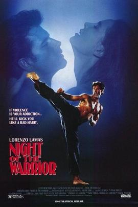 斗士之夜( 1991 )