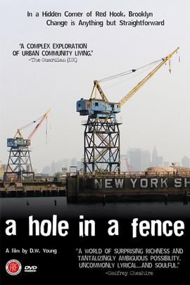 篱笆上的洞( 2008 )
