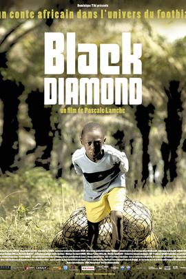 黑钻( 2010 )