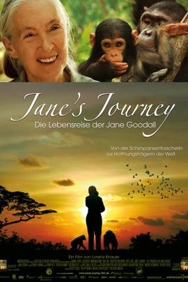 简的旅程( 2010 )