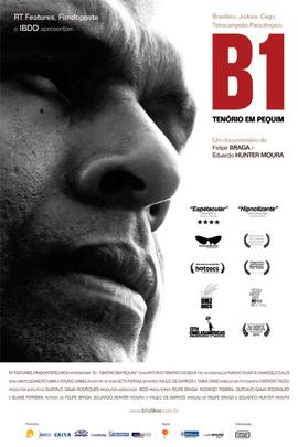 B1( 2009 )