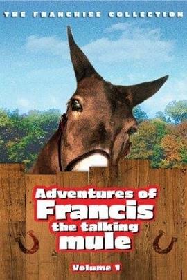 报道这个城市的弗兰西斯