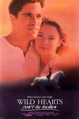 跃马英雄( 1991 )