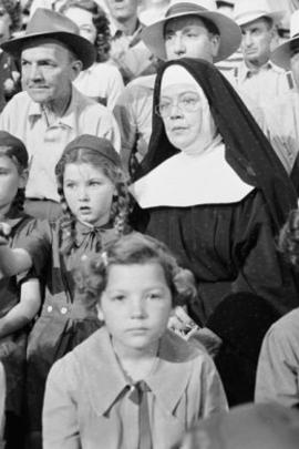 棒球天使( 1951 )
