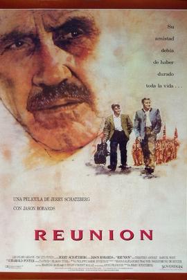 团圆( 1989 )