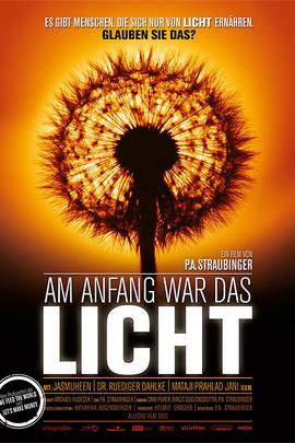 最开始,只有光( 2010 )
