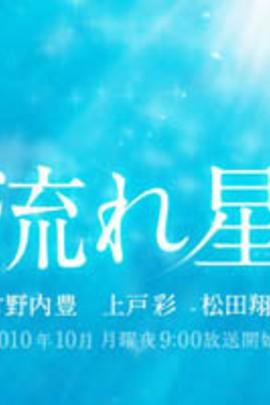 流星( 2010 )