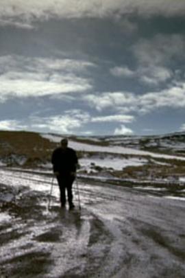 世界的尽头( 2008 )
