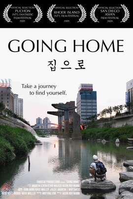 回家( 2009 )