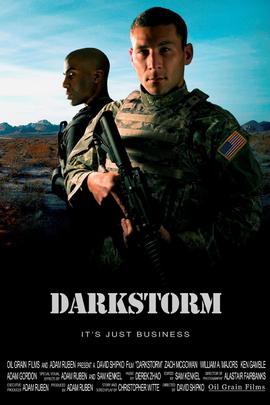 黑暗风暴( 2009 )