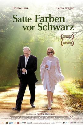 黑暗中的色彩( 2010 )