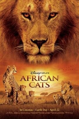 非洲猫科( 2011 )